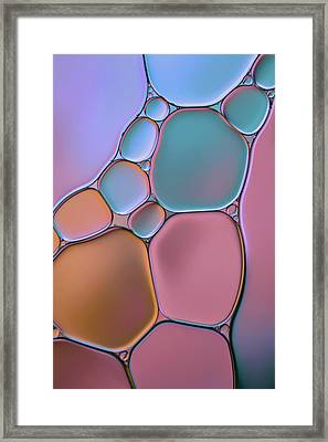 Stained Glass Framed Print by Cora Niele