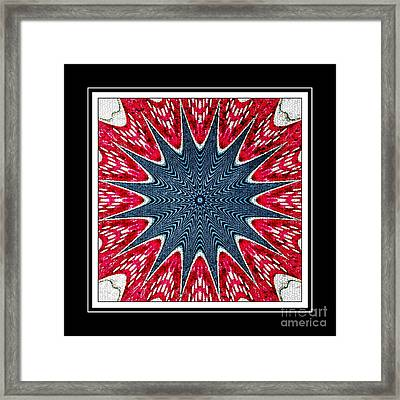 Stained Glass Lace - Kaleidoscope Framed Print by Barbara Griffin