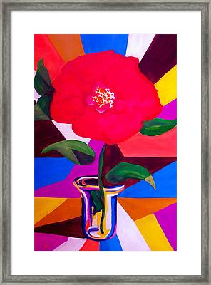 Stained Glass Framed Print by Pete Maier