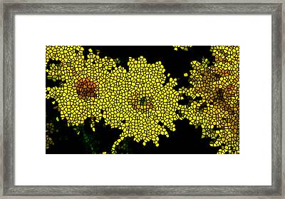 Stained Glass Yellow Chrysanthemum Flower Framed Print by Lanjee Chee