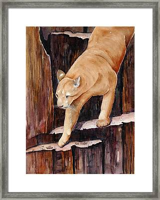 Stair Master Framed Print by Renee Chastant