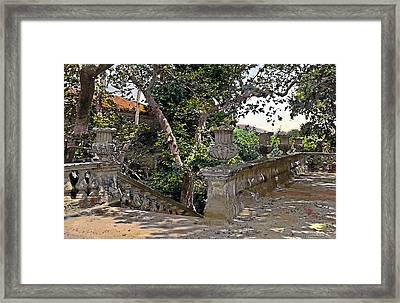 Stairs In Summer Shade Framed Print by Terry Reynoldson