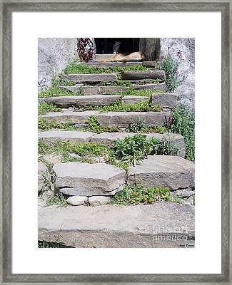 Framed Print featuring the photograph Stairs by Ramona Matei