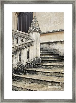 Stairs Framed Print by Svetlana Sewell