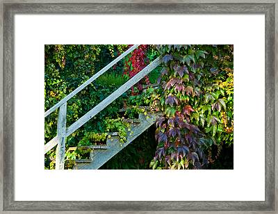 Stairs2 Framed Print