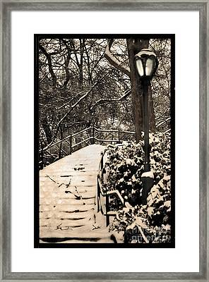 Stairway In Central Park On A Stormy Day Framed Print by Madeline Ellis