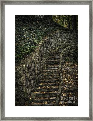 Stairway In The Park Framed Print