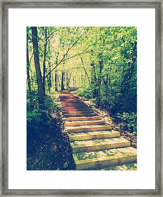 Stairway Into The Forest Framed Print