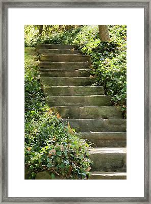 Stairway To Heaven Framed Print by Elin Mastrangelo
