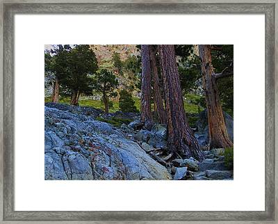 Framed Print featuring the photograph Stairway To Heaven by Sean Sarsfield