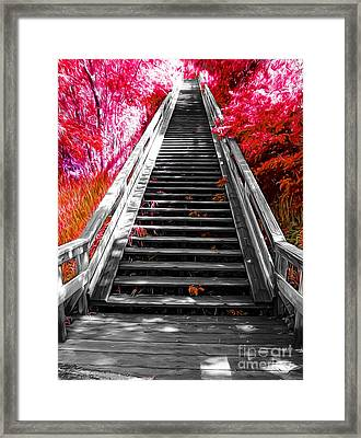 Stairway To Nature Framed Print by John Kreiter