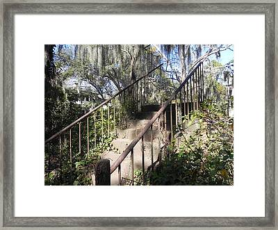 Stairway To Nowhere Framed Print by Patricia Greer