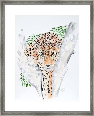 Stalker In The Trees Framed Print