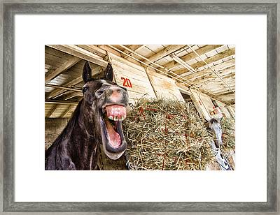 Stall 20 Framed Print by Robert Rus