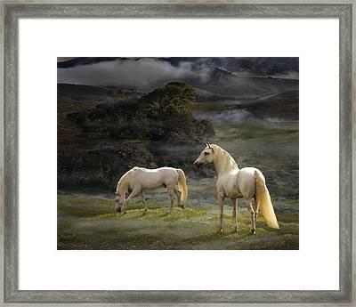 Stallions Of The Gods Framed Print by Melinda Hughes-Berland
