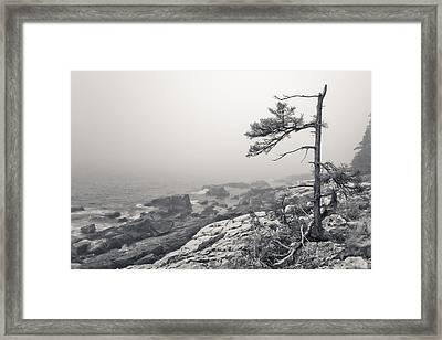 Stand Alone Framed Print by At Lands End Photography