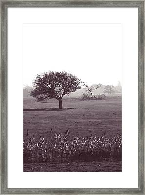 Stand Alone Framed Print by Sharon Lisa Clarke