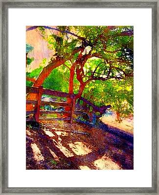 Stand Of Young Tamarind Trees - Vertical Framed Print