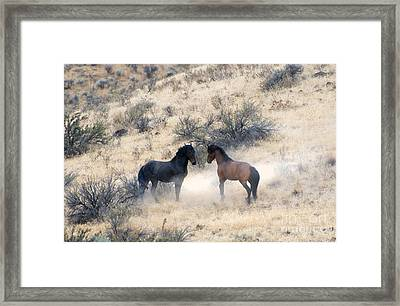 Stand-off Framed Print by Mike  Dawson