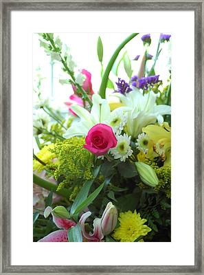 Stand Out Framed Print by M West