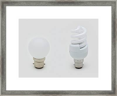 Standard Lightbulb Framed Print
