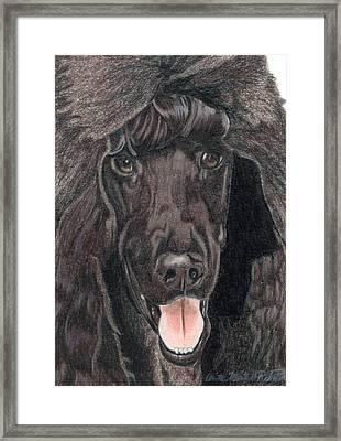 Standard Poodle Vignette Framed Print