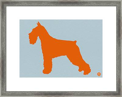 Standard Schnauzer Orange Framed Print by Naxart Studio