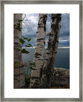 Standing Against The Storm Framed Print by James Peterson