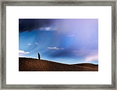 Standing Against The Wind Framed Print