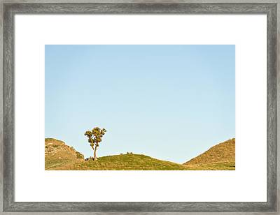 Standing Alone Framed Print by Holger Spiering