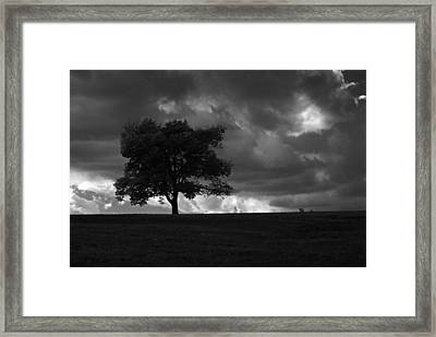 Standing Alone Framed Print by Lena Wilhite