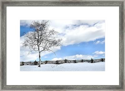 Standing Alone Framed Print by Todd Hostetter