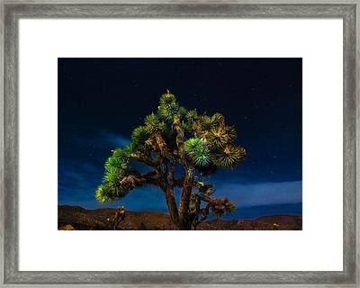 Standing Framed Print by Angela J Wright