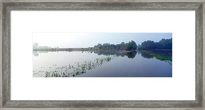 Standing Floodwater, Mississippi River Framed Print by Panoramic Images