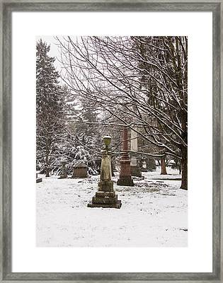 Framed Print featuring the photograph Standing Guard by Cathy Donohoue
