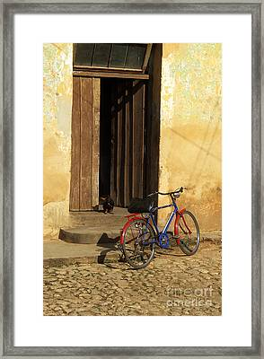Standing Guard Framed Print by James Brunker