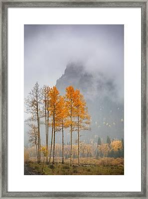 Standing In The Rain Framed Print