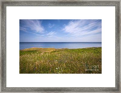 Standing On Cliff Edge Framed Print by Elena Elisseeva