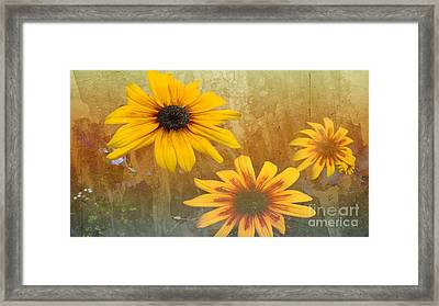 Standing Out Framed Print by Beverly Guilliams