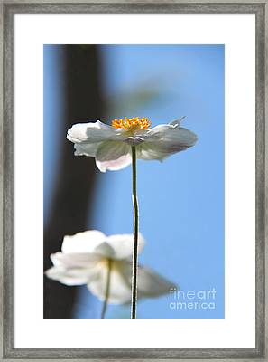 Standing Proud Framed Print by Karin Ubeleis-Jones