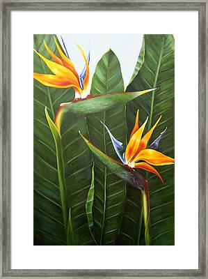 Standing Room Only Framed Print by Lorraine Ulen