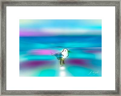 Standing Seagull Framed Print by Frank Bright
