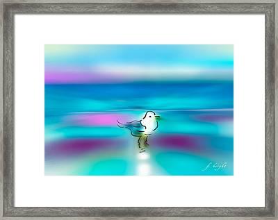 Standing Seagull Framed Print