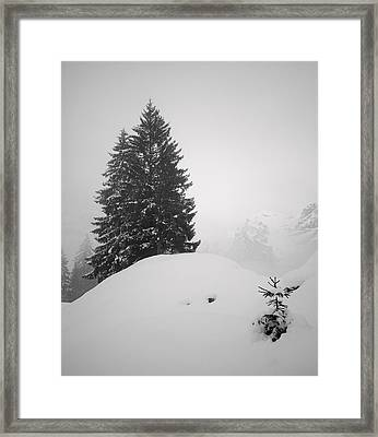 Framed Print featuring the photograph Sentinels #2 by Antonio Jorge Nunes