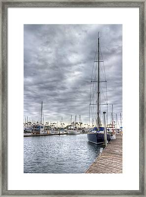 Standing Tall Framed Print by Heidi Smith