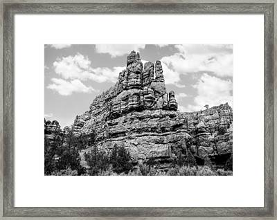 Standing Tall In Black And White Framed Print