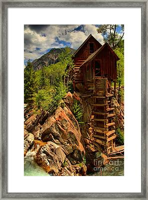 Standing Tall In Crystal Framed Print by Adam Jewell