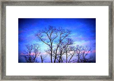 Standing Tall Framed Print by Jose Lopez