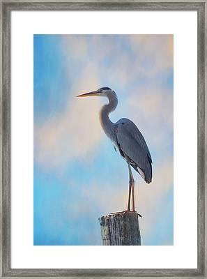 Standing Tall Framed Print by Kim Hojnacki