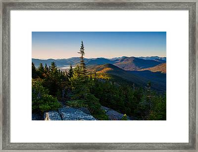 Standing Tall On Mt. Crawford Framed Print
